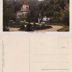 Salutari din Pitesti - Parcul Trivalea - Carte Postala Muntenia 1904-1918, Necirculata, Printata
