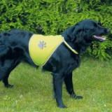 Vestă reflectorizantă pentru câini - XL