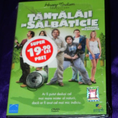 DVD ORIGINAL TANTALAII IN SALBATICIE / STRANGE WILDERNESS nou.SIGILAT, Romana