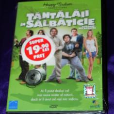 DVD ORIGINAL TANTALAII IN SALBATICIE / STRANGE WILDERNESS nou.SIGILAT - Film comedie, Romana
