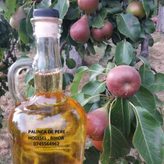 Palinca de: Prune, Pere, Caise, Cirese 52 -53 grade