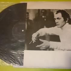 2 Vinil Discuri Muzica Clasica electrecord Anton Bruckner Simfonia dirijor Cristian Mandeal