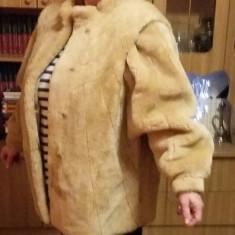 Haina Mouton dòree putin purtata - haina de blana