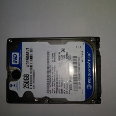 HDD Laptop 250 Gb / Western Digital Blue WD2500BEVT / Testat / SATA 2 (7E), 200-299 GB, Rotatii: 5400, 8 MB