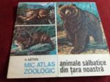 N SAFTOIU MIC ATLAS ZOOLOGIC ANIMALE SALBATICE DIN TARA NOASTRA