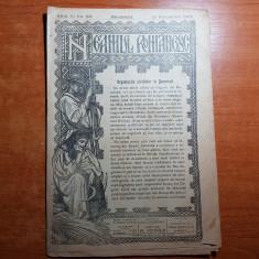 Revista neamul romanesc 15 noiembrie 1907-art. de nicolae iorga si a. c. cuza