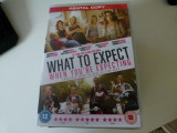 What to expect - dvd, Engleza, independent productions