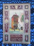 RICORDO DI TRIESTE - ALBUM TURISTIC 32 FOTOGRAFII COLOR - anii 1920 (EN - ITAL)