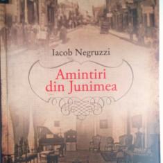 Iacob Negruzzi - Amintiri din Junimea, Humanitas 2011 - Biografie