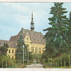 Bnk cp Deva - Vedere din parc - uzata - marca fixa - Carte Postala Transilvania dupa 1918, Necirculata, Printata