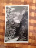 M 34 Lacu Rosu 1940