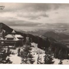 CPI (B9772) CARTE POSTALA - MASIVUL RARAU. CABANA, RPR - Carte Postala Moldova dupa 1918, Necirculata, Fotografie