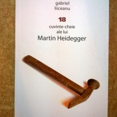 Gabriel Liiceanu - 18 cuvinte-cheie ale lui Martin Heidegger - Filosofie