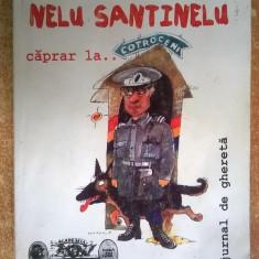 Mircea Dinescu – Nelu Santinelu caprar la... {Cu autograf} - Carte poezie