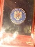 Insigna Guvernul Romaniei -Minister Transporturi , Constr. si Turism d= 1,7 cm