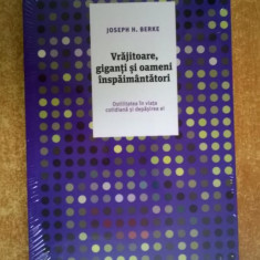 Joseph H. Berke - Vrajitoare, giganti si oameni inspaimantatori - Carte Psihologie