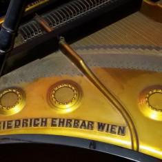 Pian Friedrich Ehrbar