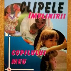 John Maxwell - Clipele implinirii copilului meu
