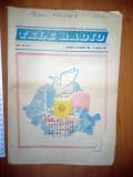 PROGRAM TELE RADIO REVELION 1987 - PRIMUL PROGRAM TV COLOR - RADIO TV