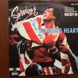 Rocky IV survivor burning heart single disc vinyl muzica rock soundtrack 1985 - Muzica soundtrack, VINIL