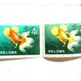 CHINA  PESTI EROARE  CULOARE MARE  FOARTE RARA . GARANTAT AUTENTICA !!!, Stampilat