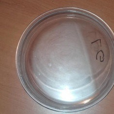 Sticla hublou LG 325 milimetri - Piese masina de spalat