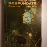Pesteri Scufundate, Editura Academiei 1987