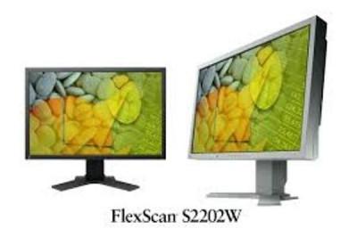 Monitor 22 inch LCD, TFT EIZO FlexScan S2202W, Gray foto