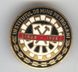 Insigna MINERIT -  1968-1998 INSTITUTUL de MINE - PETROSANI