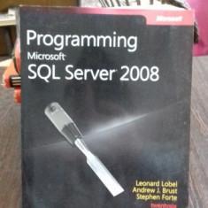 PROGRAMMING MICROSOFT SQL SERVER 2008 - LEONARD LOBEL - Carte Informatica