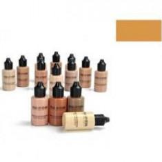 Pigment Culoare Profesional Make Up Studio pt Aerograf Gold - Fond de ten