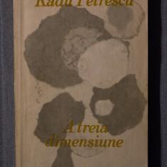 Radu Petrescu - A treia dimensiune