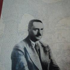 IZVOARE SI POPASURI de G.M CANTACUZINO - Carte Arhitectura