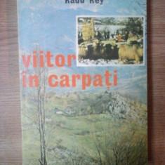 VIITOR IN CARPATI de RADU REY, 1979 - Carte Fabule