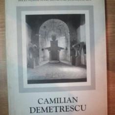 CAMILIAN DEMETRESCU . 30 DE ANI ARTA ITALIA 1969-2000, 2000 - Carte Istoria artei