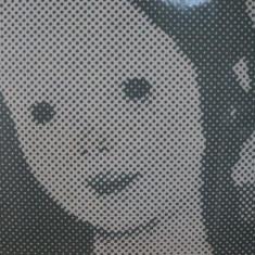 EXPOZITIA N.N. TONITZA, 1964 - Carte Istoria artei