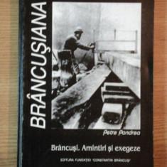 BRANCUSIANA de PETRE PANDREA - Carte Istoria artei