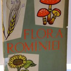 FLORA ROMANIEI- I. SIMIONESCU, EDITIA A IV A - Carte Biologie