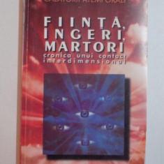 FIINTA, INGERI, MARTORI CRONICA UNUI CONTACT INTERDIMENSIONAL de DAN CHIABURU, 1998 - Carte ezoterism