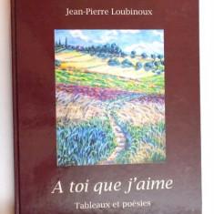 A TOI QUE J' AIME, TABLEAUX ET POESIES par JEAN - PIERRE LOUBINOUX - Carte in alte limbi straine