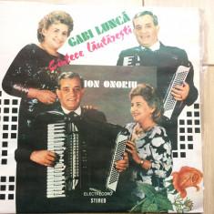 Gabi lunca ion onoriu cantece lautaresti anii mei si tineretea disc vinyl lp - Muzica Lautareasca electrecord, VINIL