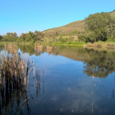 Vand sau inchiriez lac de pescuit, Teren extravilan