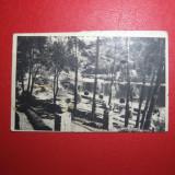195O - CALIMANESTI - CIRCULATA, Fotografie