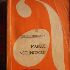 STEFAN MIHALCEA ,  MARELE NECUNOSCUT / COLECTIA AVENTURA