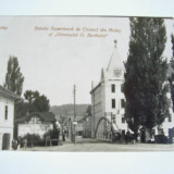 Hateg Scoala Superioara de Comert si Gimnaziul G. Berthelot  cca 1930, Necirculata, Fotografie