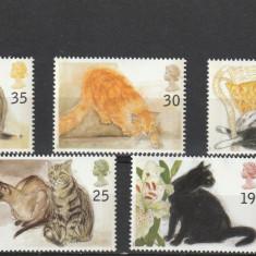 Fauna, pisici de rasa Anglia. - Timbre straine, Nestampilat