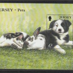 Fauna, pui de animale, Jersey. - Timbre straine, Nestampilat