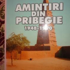 Amintiri din pribegie an 2002/465pag- Neagu Djuvara - Carte Istorie