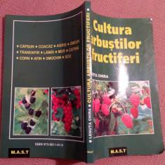 Cultura Arbustilor Fructiferi - Lenuta Chira - Carte gradinarit
