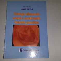 Patologia Inflamatorie Cronica A Urechii Medii. Sechelele Postotitice- V. Ciuchi - Carte ORL